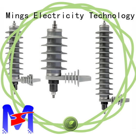 Mings 366kv lighting arrester price from China for electricity distribution