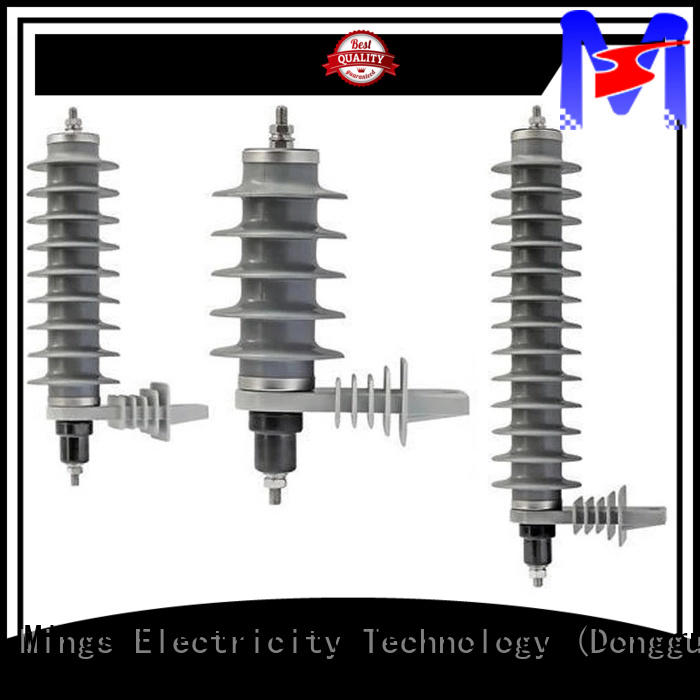 Mings safe surge arrester from China for government sevice