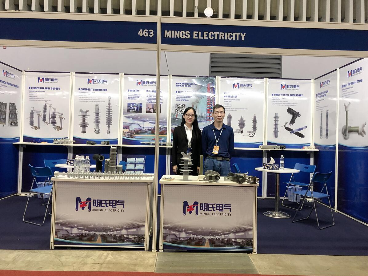 Mings Electricity participated in the Vietnam ETE 2019 Exhibition