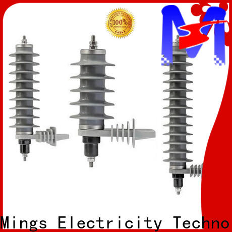 Mings safe lightning surge arrester wholesale for government sevice